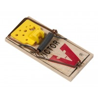 Tapette à souris en bois Victor Easy Set 10 + 2 offertes