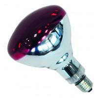 Ampoule PHILIPS IR à vis rouge 250 w
