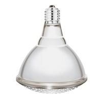 Lampe IR blanche Interheat 250W