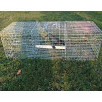 Piège à oiseaux, 3 compartiments BOXTRAP