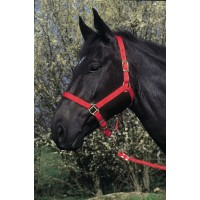 Licol nylon 22 mm réglable cheval rouge