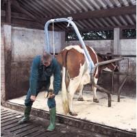 Portique pour soins du pied bovin VINK