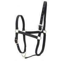 Licol nylon doublé cuir pour chevaux de trait